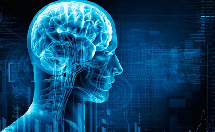 ¿Cómo funcionan los implantes de cerebro?
