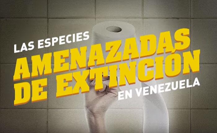 Conoce las especies en peligro de extinción en Venezuela