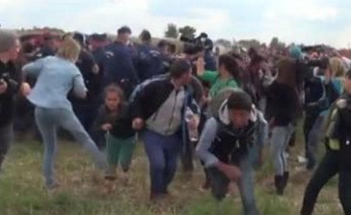 Una reportera pega patadas y pone zancadillas a varios refugiados en Hungría