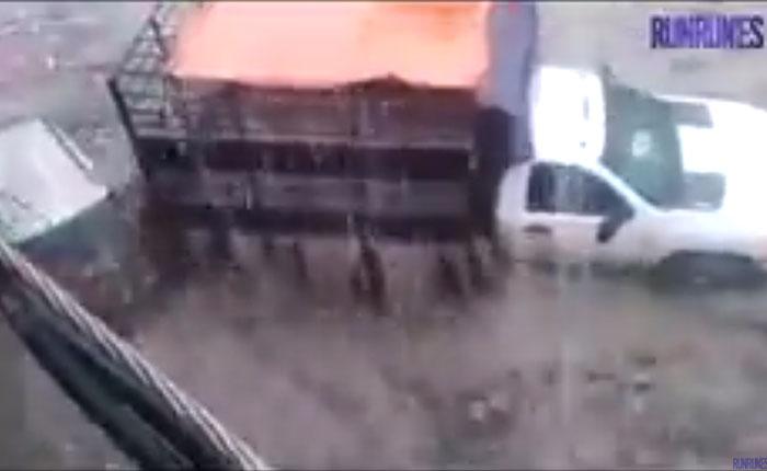VIDEO ¡Se salvaron de milagro! Dos pasajeros fueron arrastrados por la lluvia junto a varios carros en Petare