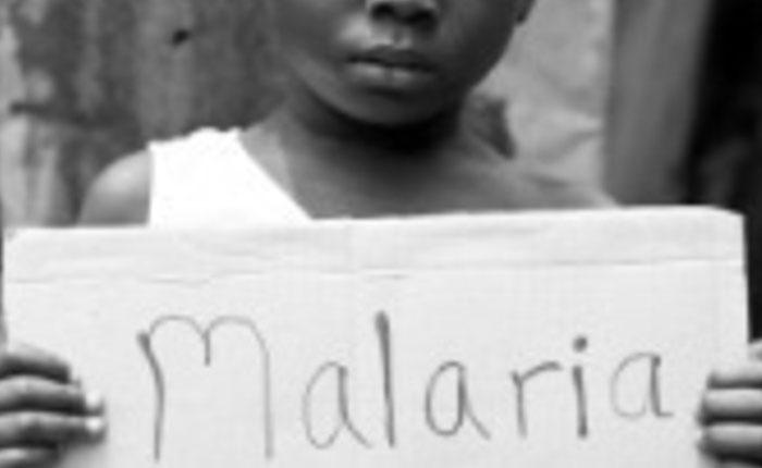 Malaria aumenta en Venezuela aunque disminuye en América