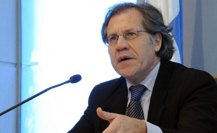 Almagro pidió a la Eurocámara la liberación de presos políticos venezolanos