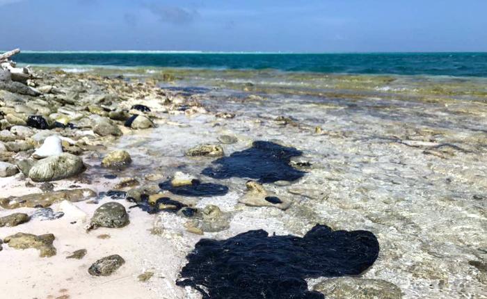 Más de 60 ONG se pronuncian por derrame petrolero que afecta las costas de Nueva Esparta y Sucre
