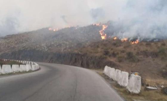 Incendios en la Sierra Nevada en Mérida no han sido controlados
