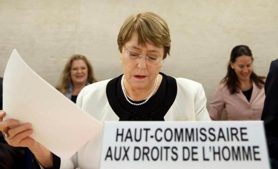 Informe Bachelet y la FAN, por José Guerra