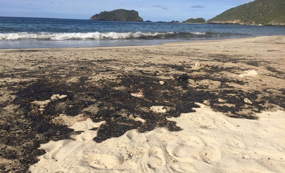 Acceso restringido a Bahía de Cata por derrame petrolero