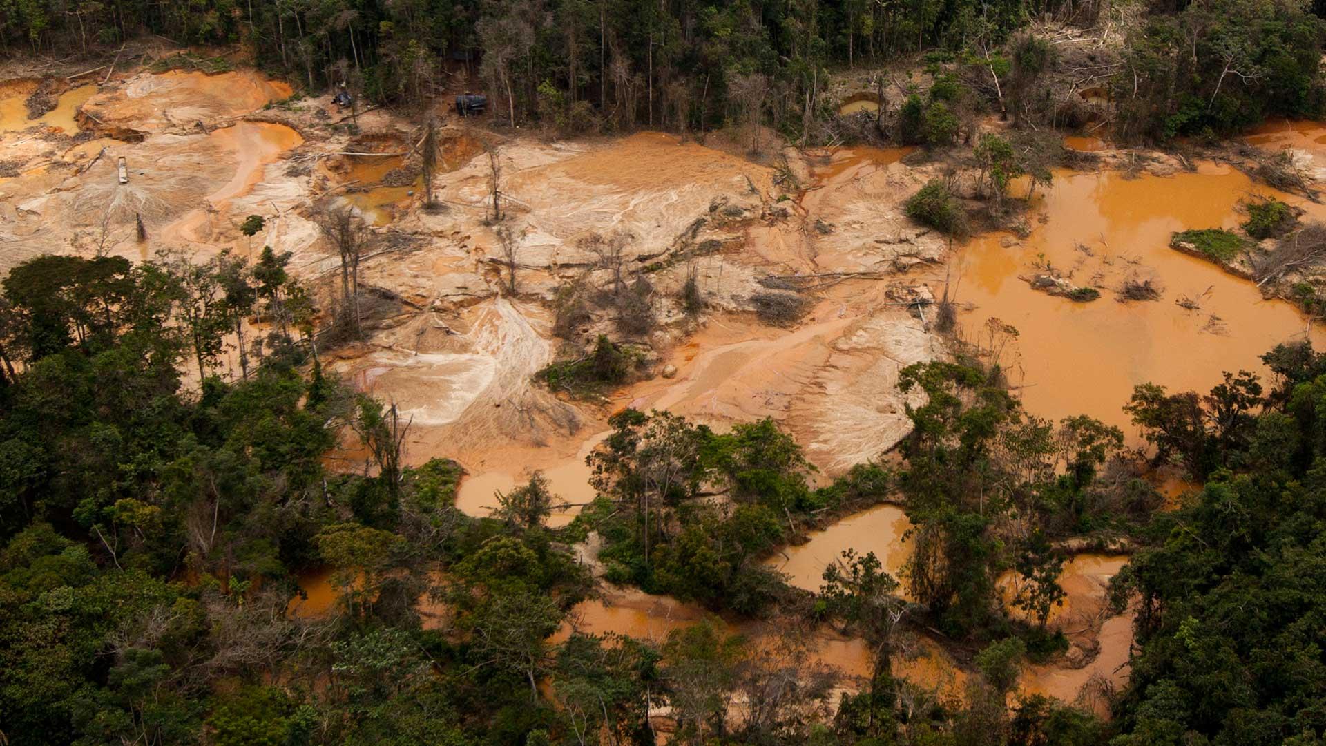 Continúa asedio a indígenas del Caura