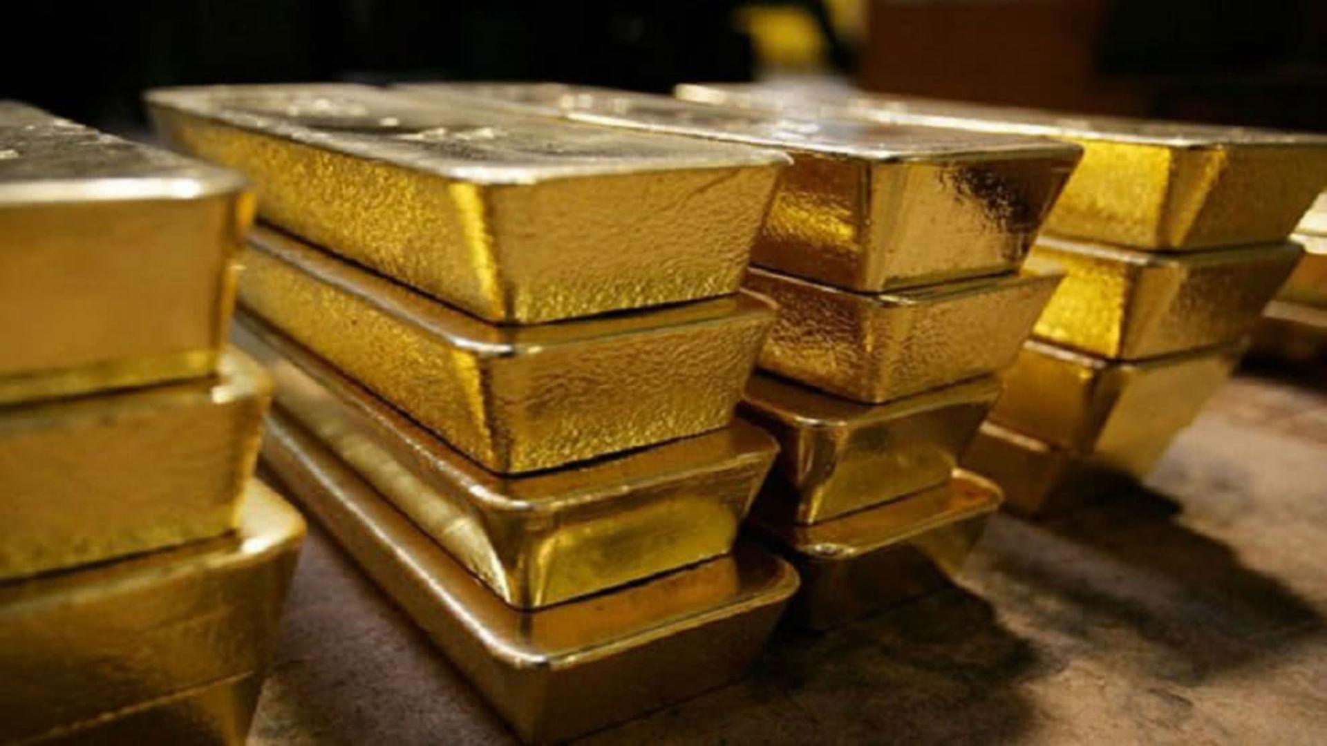 Embajadora de Guaidó desmiente acuerdo entre BCV y Pnud con oro venezolano
