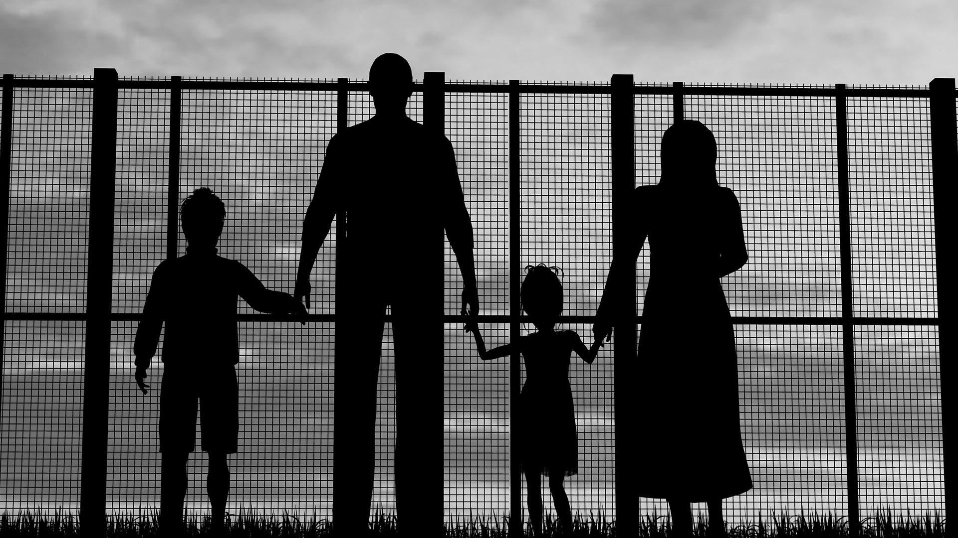 Sirios, afganos y venezolanos coparon obtención de asilo en 2019