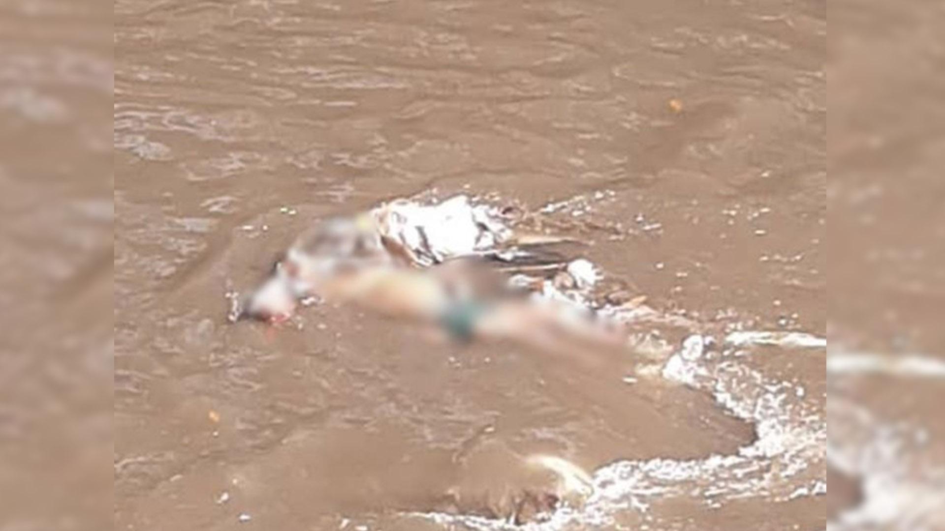 #MonitordeVíctimas | Identifican cadáver hallado en el río Guaire