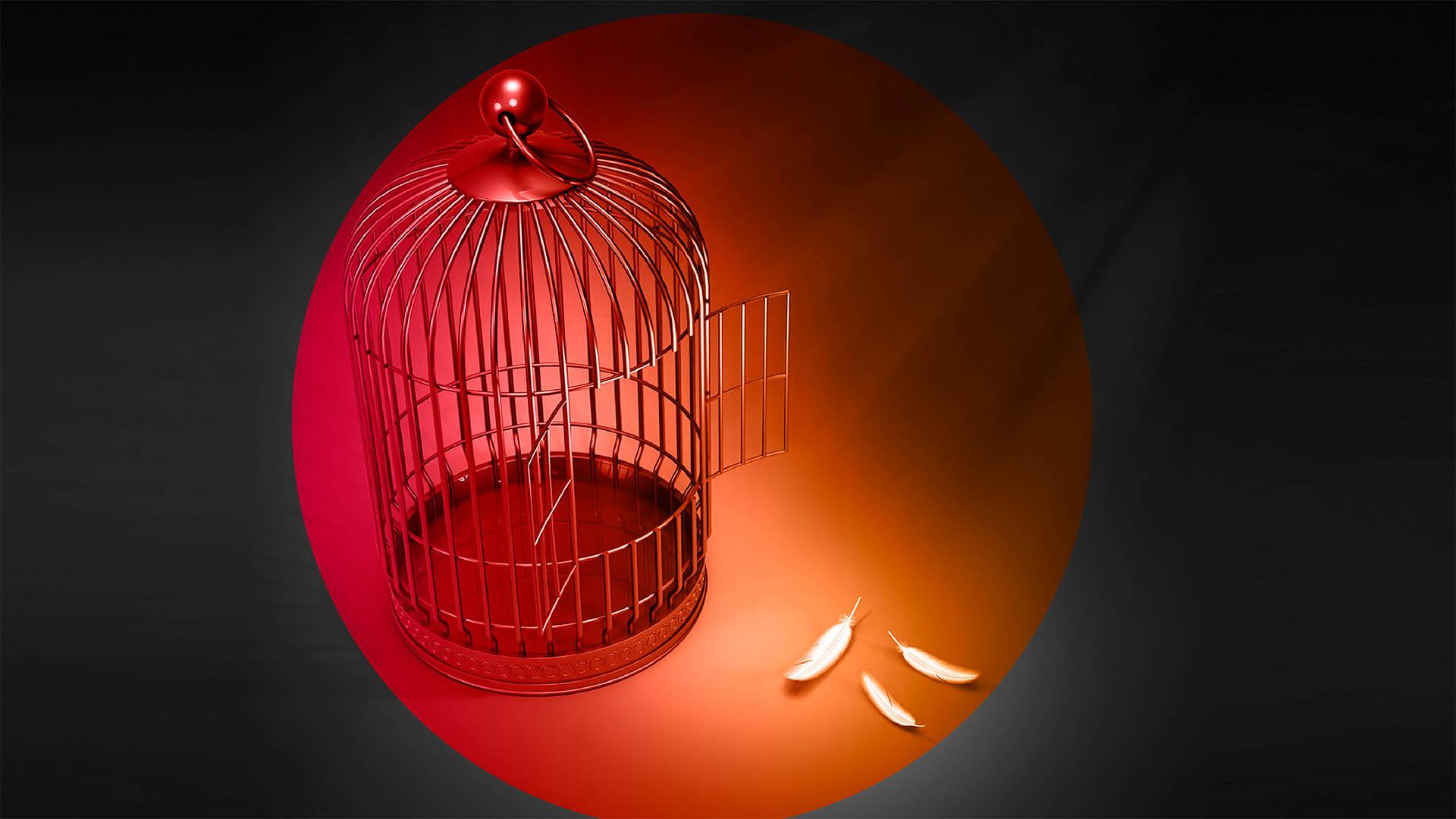 ¿Sabe usted cómo poner fin a la usurpación?, Eddie A. Ramírez S.