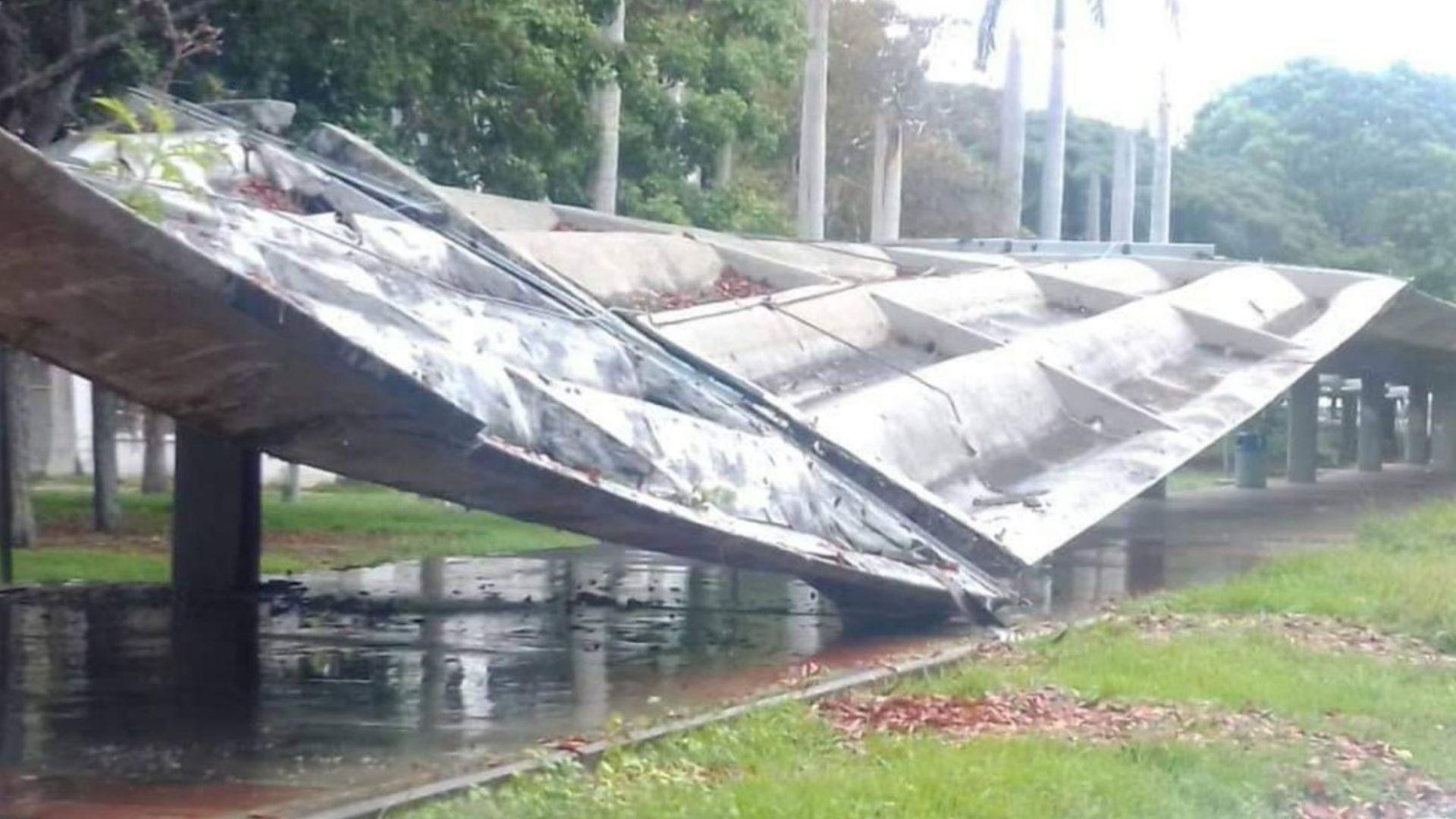 Unesco dispuesta a colaborar para reparar techo de la UCV