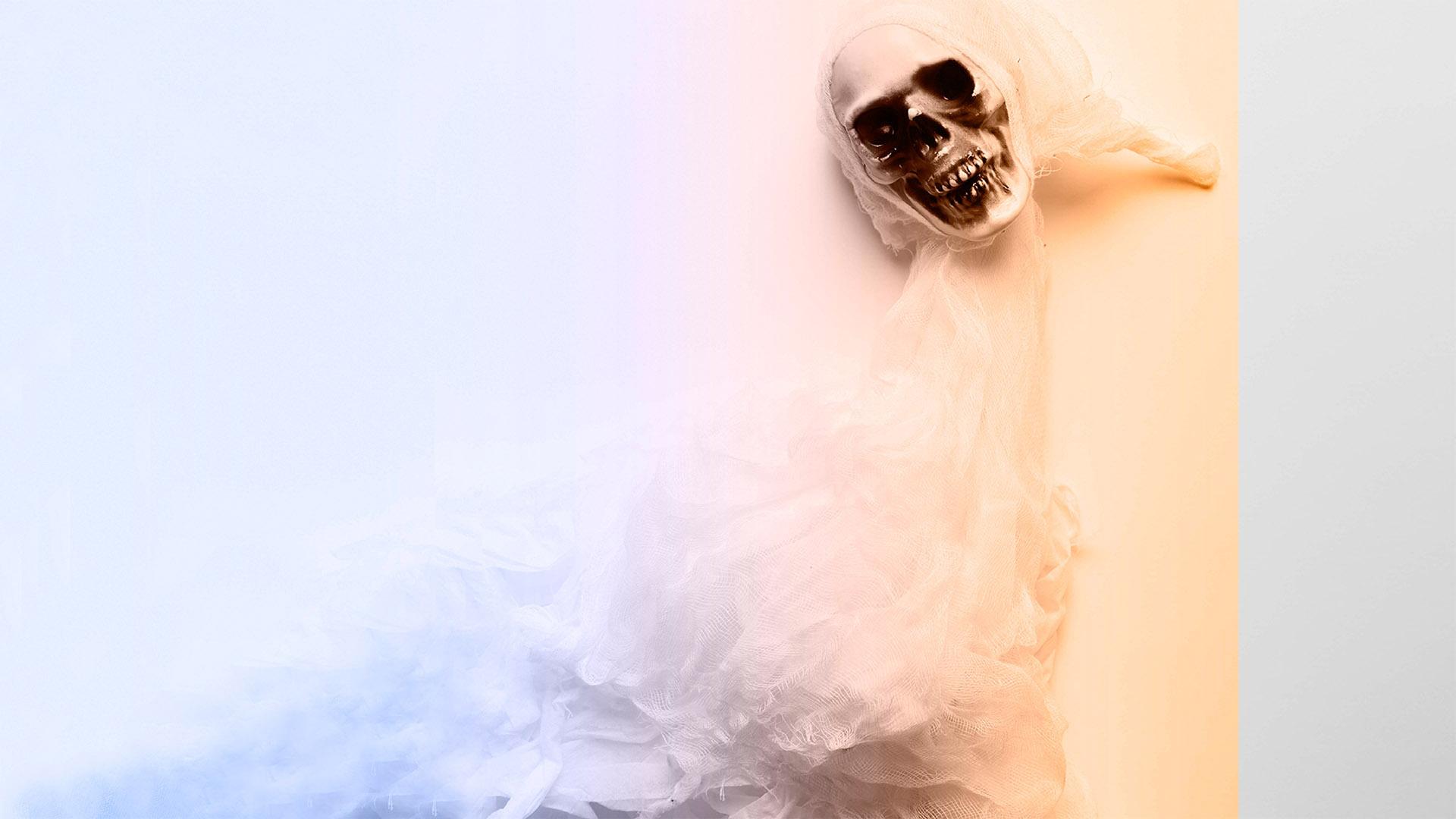 El miedo a los aparecidos, por Elías Pino Iturrieta