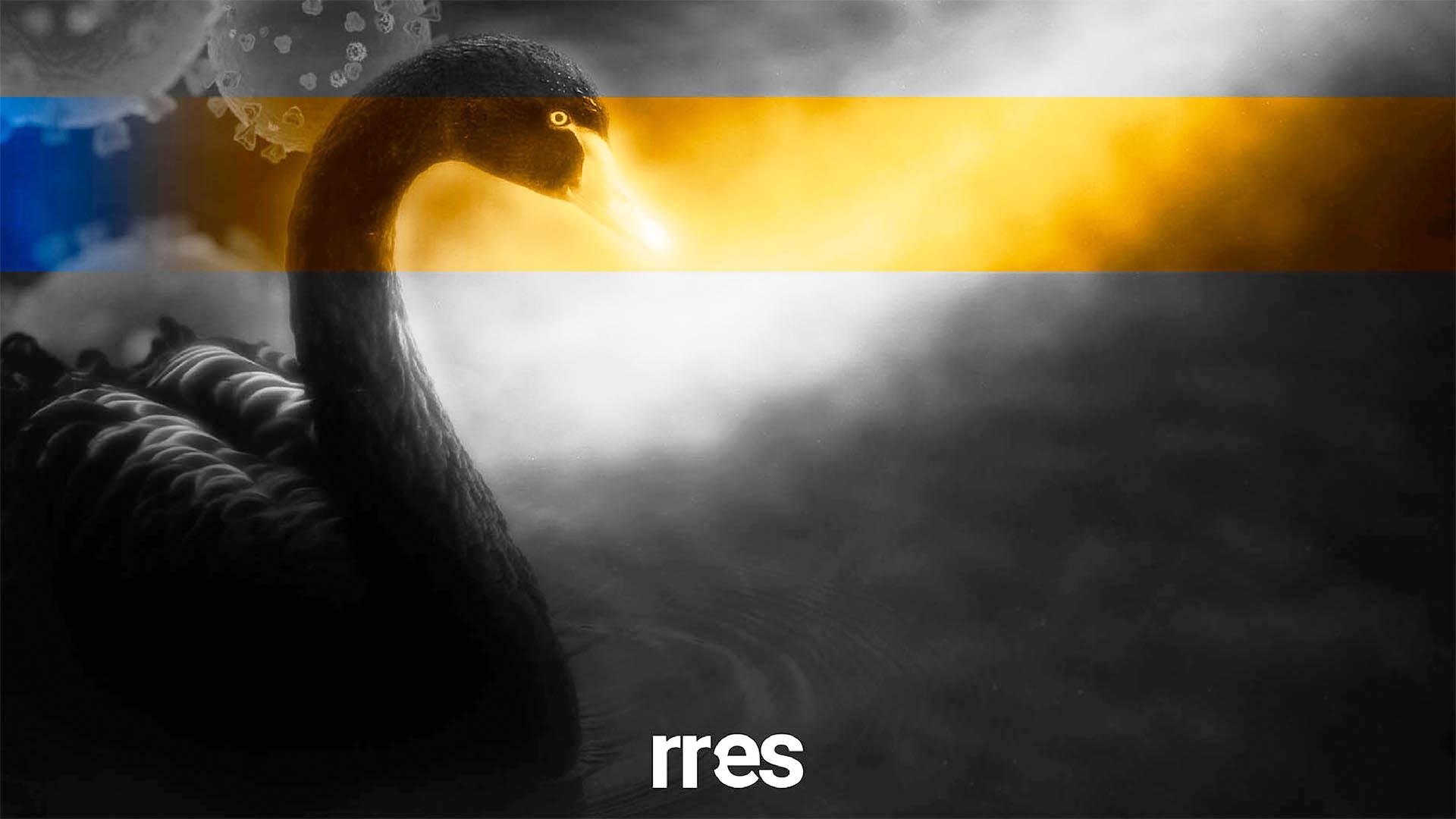 El cisne negro nació en un mercado de Wuhán, por Julio Castillo Sagarzazu