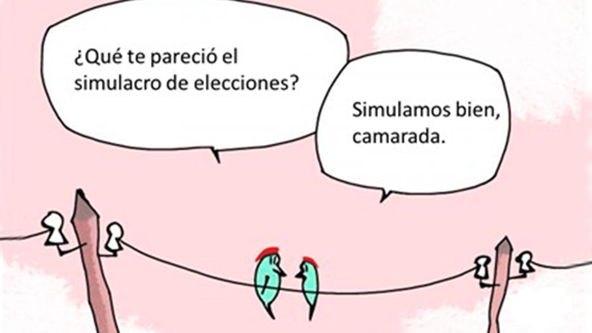 #Top10Humor | Algunos comentarios no escuchados en el simulacro de elecciones legislativas, por Víctor J. Ochoa S.
