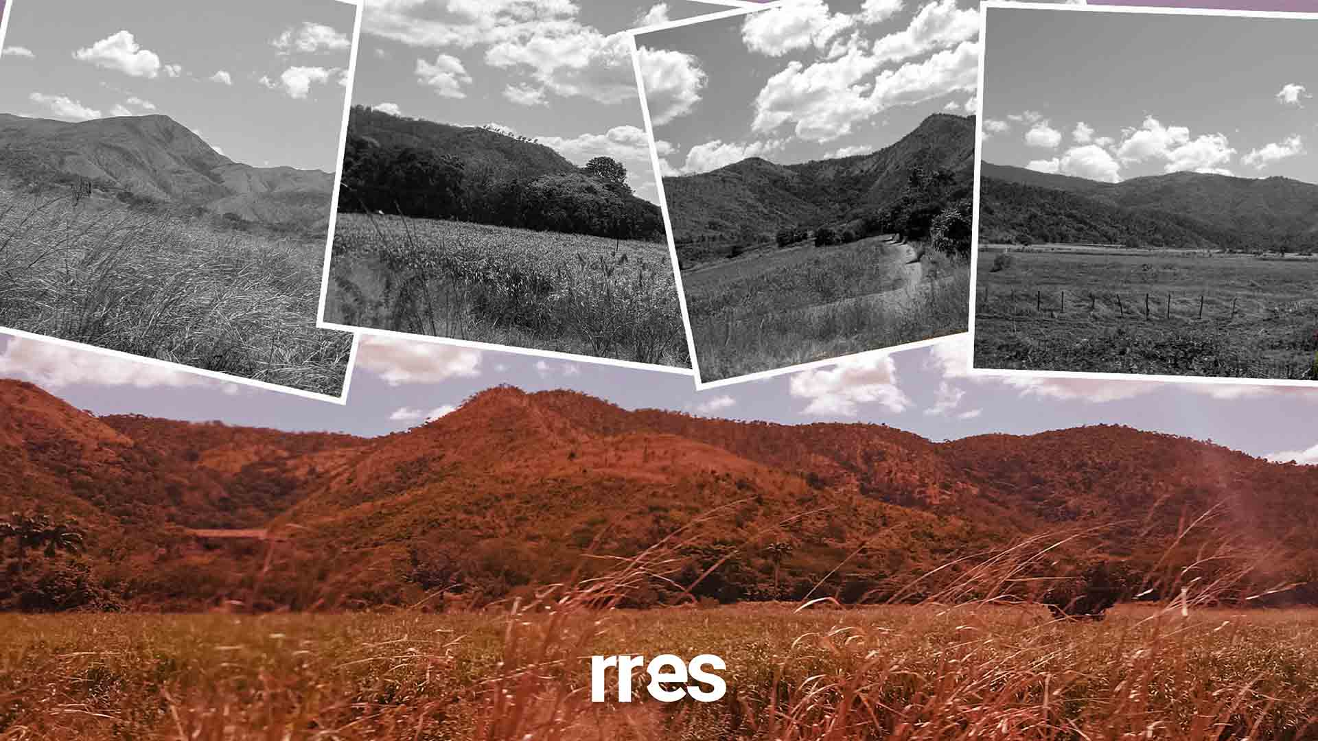 Cerritos de Aragua, por Samuel González-Seijas